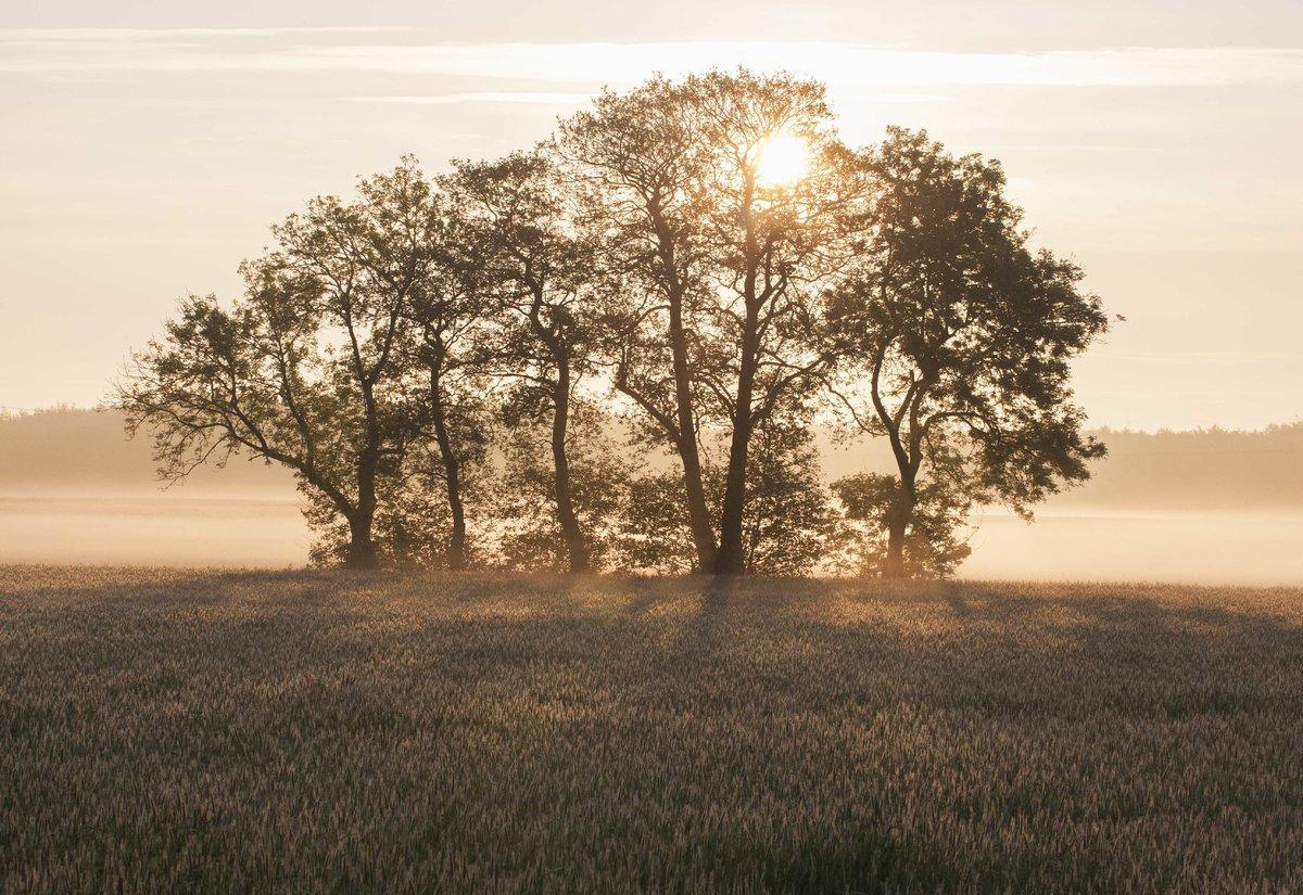 Derde droogte op rij vraagt om versnelde aanpak droogte