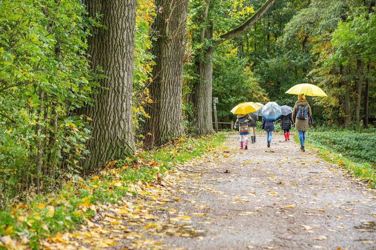 Natuurbeheerders en de Dierenbescherming roepen op 'wees welkom maar wandel lokaal, blijf op de paden en houd de hond aan de lijn'